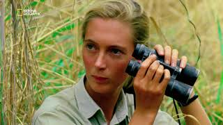 JANE | TRAILER | National Geographic