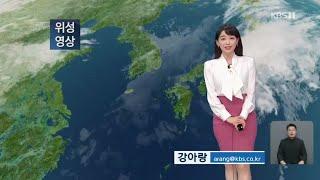 9시뉴스 강아랑기상캐스터 201010