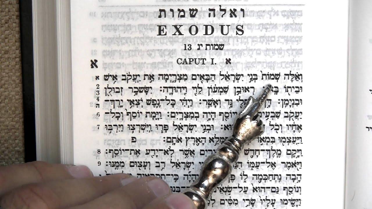 Exodus/Shemot - Pinterest
