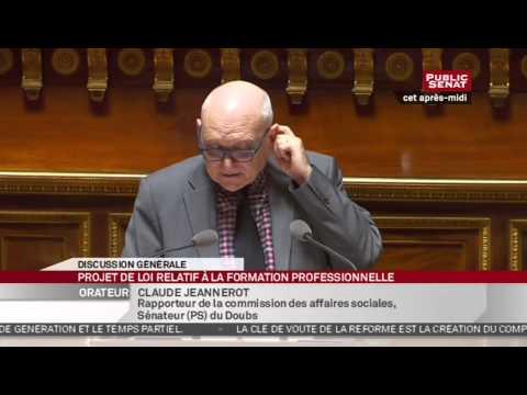 En Séance - Projet de loi relatif à la formation professionnelle