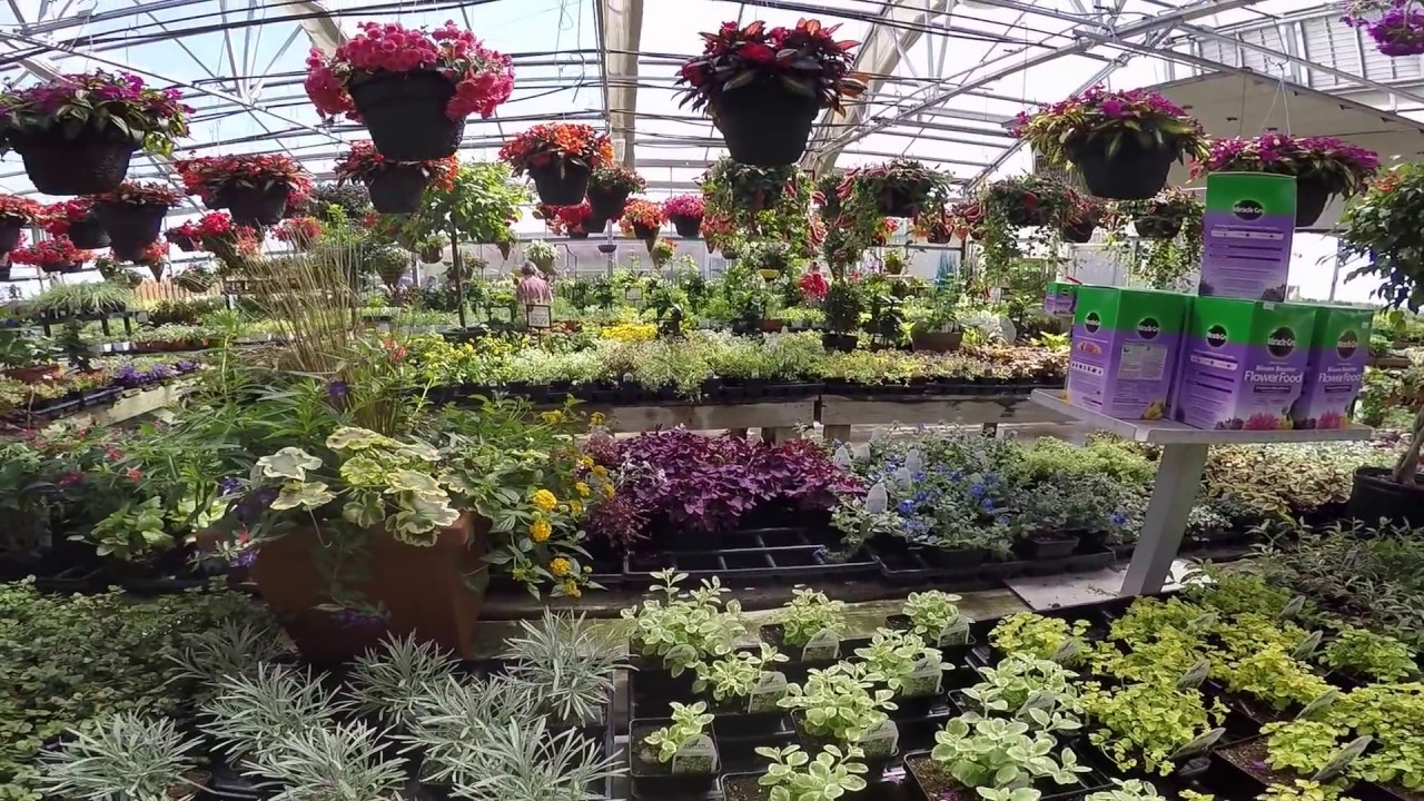 culver 39 s garden center greenhouse youtube