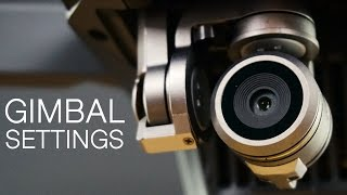 How To Adjust Gimbal Tilt And Speed Settings | DJI Mavic Pro