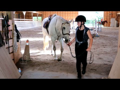 HER HORSE HAS A BROKEN LEG !!!!  Day 171 (06/21/17)
