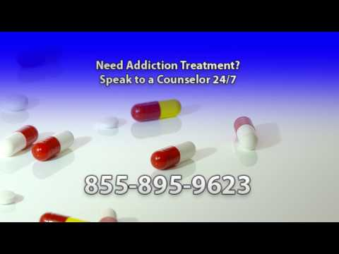 drug rehabilitation hotline