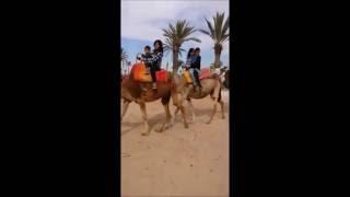 Exursion en famille, visite de l'Atlas et le sahara Marocain