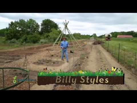 Organic Gardening with People's Choice Organics Master Grower Billy Styles