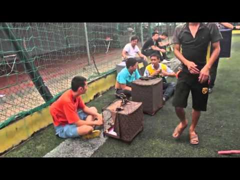 Hội Thi Chim - Chùa Láng Open