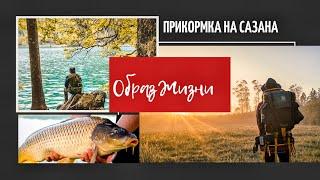 Самая бюджетная прикормка для рыбалки на сазана и карпа своими руками