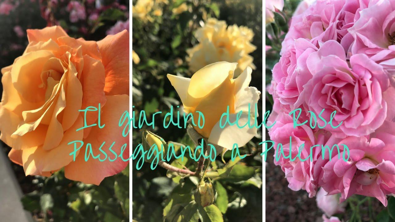 Passeggiando a palermo il giardino delle rose travelvlog youtube - Il giardino delle rose ...