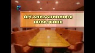 видео Организационное поведение