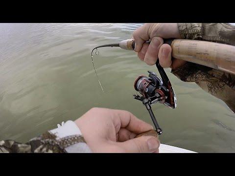 Columbia River Spring Walleye