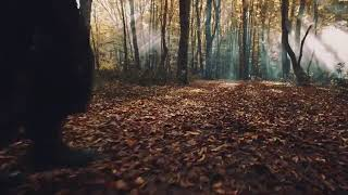 İrem Derici - Tek Tabanca (teaser) Video