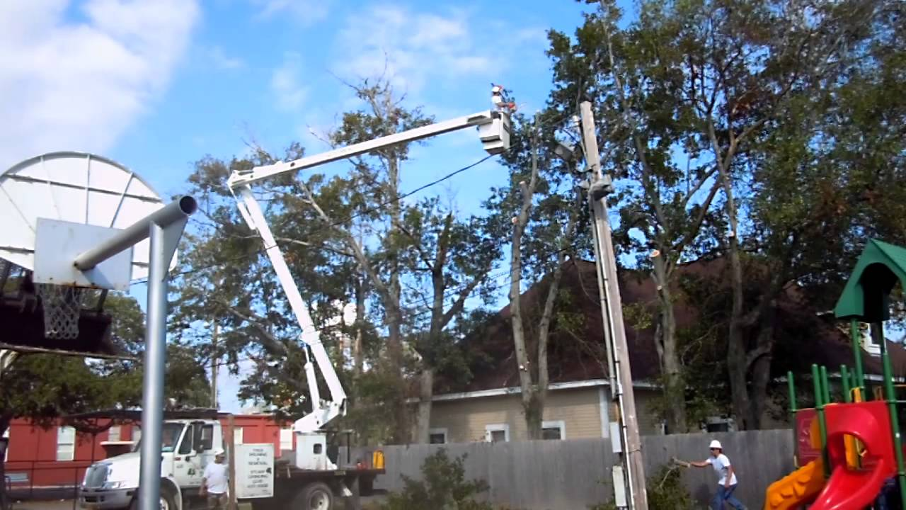 Bobcat And Bucket Truck Tree Removal Gulfport Mississippi