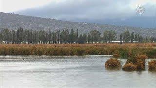 Древнее озеро поможет узнать, как менялся климат (новости)