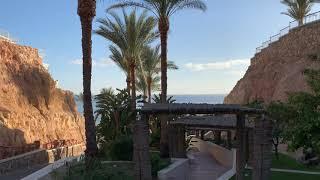 Отель Риф Оазис бич Резорт Египет Шарм эль Шейх 2 02 2021