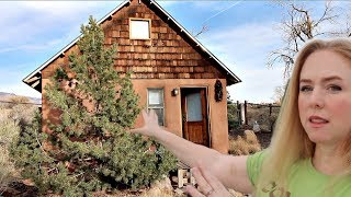 Gambar cover How to Make $4260 A Month With a Tiny House (Airbnb)