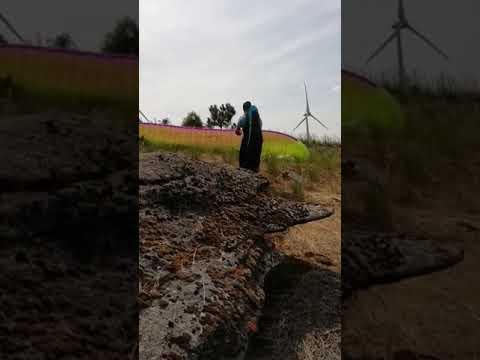 Parapente Portugal Trevões Penela da Beira