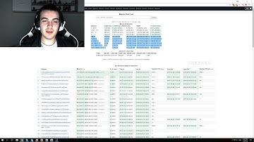 Richest Bitcoin wallets