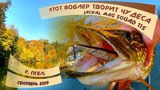 Этот ВОБЛЕР творит ЧУДЕСА!!! МАГИЯ на рыбалке. Ловля ЩУКИ осенью на реке ПСЁЛ