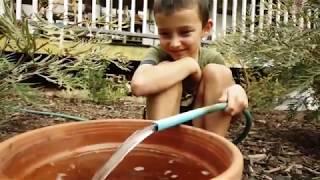 Backyard Biodiversity Video