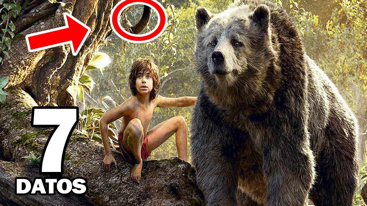7 Curiosidades Sobre El Libro de la Selva - YouTube