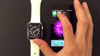 WhatsApp Nachrichten auf der Apple Watch