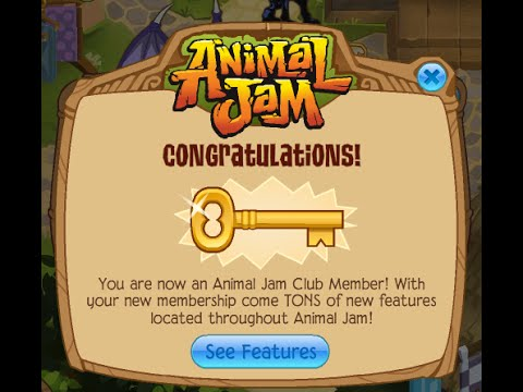 The codes are in increments, meaning there is a one-month, three-month, and one-year membership option available. The one-month membership code is the least expensive, with the yearly membership being the most expensive. These membership codes will unlock access to exclusive areas of Animal Jam and give you a ton of other benefits.