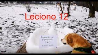 Lernu Esperanton kun Superhundo! – Leciono 12