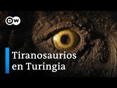 El Pueblo De Los Saurios | DW Documental