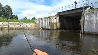 Что Клюет на Спиннинг. Рыбалка на Хищника в Июне
