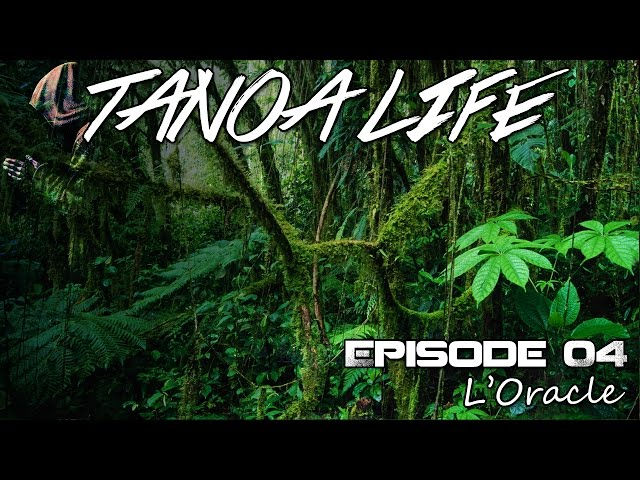 [Replay] Tanoa Life S08EP04 : L'Oracle (Gameplay Rebelle)