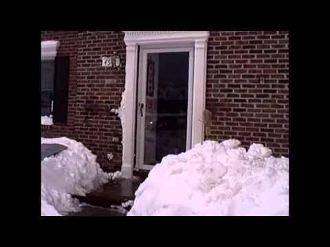 93 Blizzard in Johnson City