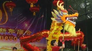 видео Когда начинается китайский Новый год 2016, и как его празднуют?