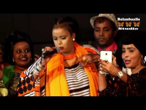 Show Live Nairobi Nasteexa Indho Hees Cusub Jees Jees by Balanbalis Studio 2016