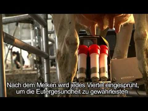 Lely Astronaut A4 - Product development (German)