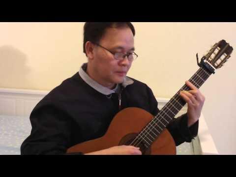 Tuổi Hồng Thơ Ngây -- Guitar Solo