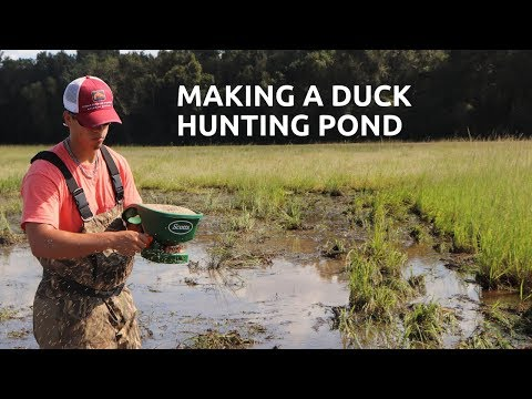 Duck Hunting: How You're Gonna Kill More Birds!
