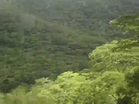 A drive by kitonga Iringa-Morogoro