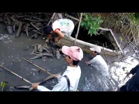 Bắt cá - Nha Mân (30/06/2013)