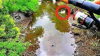 이런 수로에서  거대  물고기를 끌어 내다니 ??