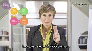 GAPFRAME.org - Translating the SDGs into a tool for Business