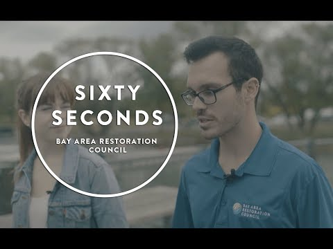 60 Seconds with Steve Watts