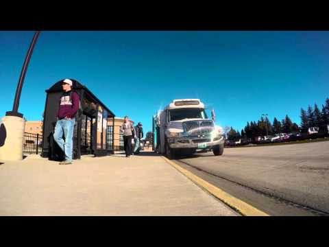Take a Ride on UWyo Roundup's Buses
