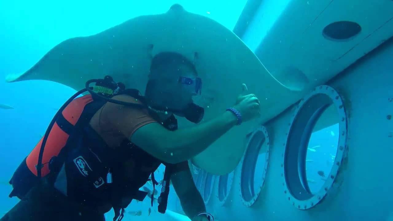 Submarine Safari in Tenerife