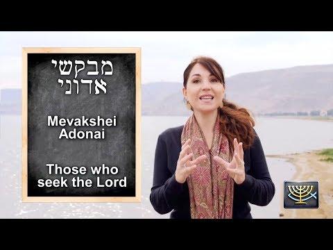 Hebrew 044 - Mevakshei Adonai