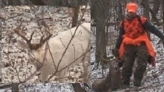 Albino Buck filmed just prior to 8 point hunt with Muzzle Loader in WI how we buck hunt