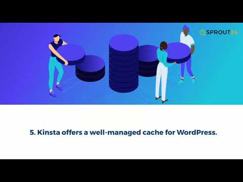 WordPress Hosting Review for Kinsta - Is it really a fast solution?