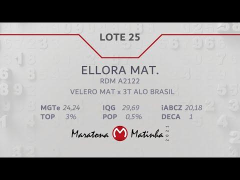 LOTE 25   Maratona Matinha