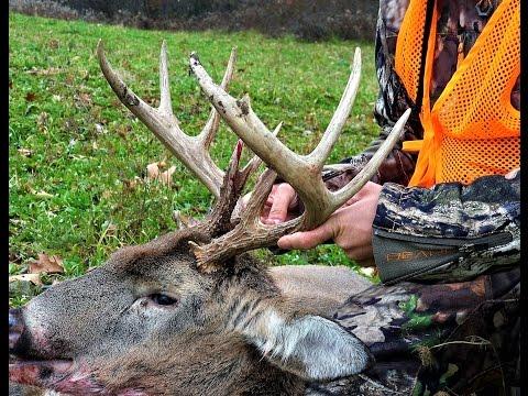 Deer Hunting 2016 Rifle Season Pennsylvania