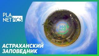 VR 360 | Астраханский биосферный заповедник